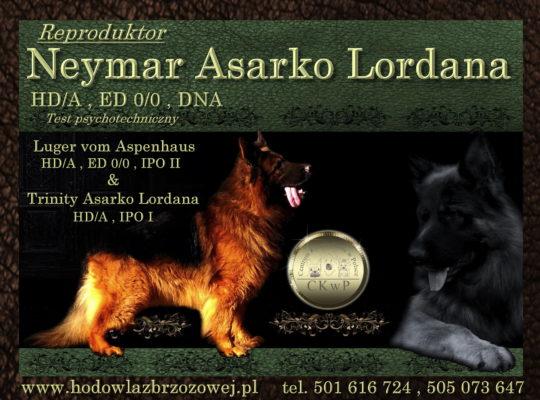 Neymar Asarko Lordana HD/A, ED 0/0, DNA